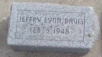 DAVIS, JEFFRY LYNN - Will County, Illinois | JEFFRY LYNN DAVIS - Illinois Gravestone Photos