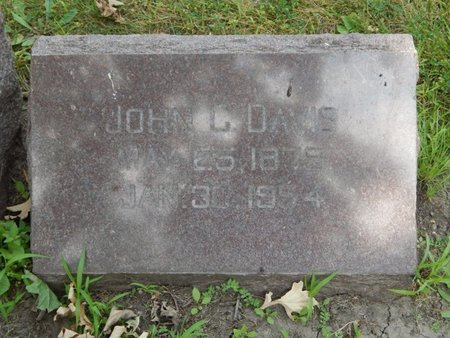 DAVIS, JOHN L - Will County, Illinois | JOHN L DAVIS - Illinois Gravestone Photos