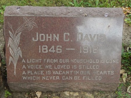 DAVIS, JOHN C - Will County, Illinois | JOHN C DAVIS - Illinois Gravestone Photos