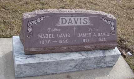DAVIS, MABEL - Will County, Illinois | MABEL DAVIS - Illinois Gravestone Photos