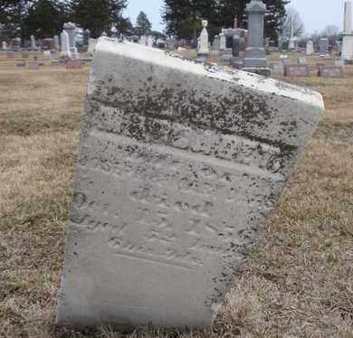 DAVIS, MARGARET - Will County, Illinois | MARGARET DAVIS - Illinois Gravestone Photos