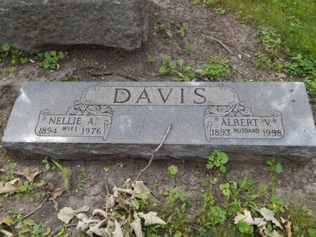 DAVIS, ALBERT V - Will County, Illinois | ALBERT V DAVIS - Illinois Gravestone Photos