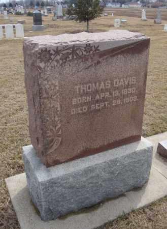 DAVIS, THOMAS - Will County, Illinois | THOMAS DAVIS - Illinois Gravestone Photos