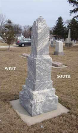 DAVIS, WILLIAM - Will County, Illinois | WILLIAM DAVIS - Illinois Gravestone Photos