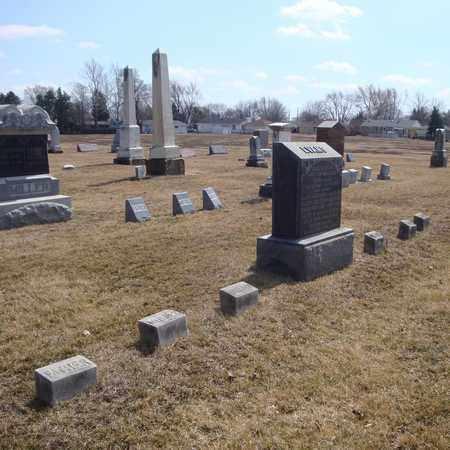 EVANS, BETSEY - Will County, Illinois | BETSEY EVANS - Illinois Gravestone Photos