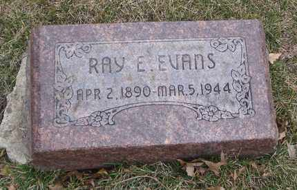 EVANS, RAY E. - Will County, Illinois | RAY E. EVANS - Illinois Gravestone Photos