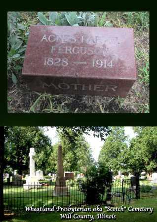 FERGUSON, AGNES - Will County, Illinois   AGNES FERGUSON - Illinois Gravestone Photos