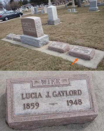 GAYLORD, LUCIA J. - Will County, Illinois | LUCIA J. GAYLORD - Illinois Gravestone Photos