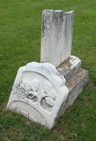 GREEN, MARK - Will County, Illinois | MARK GREEN - Illinois Gravestone Photos
