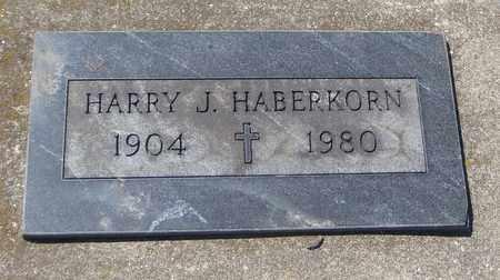 HABERKORN, HARRY J. - Will County, Illinois | HARRY J. HABERKORN - Illinois Gravestone Photos
