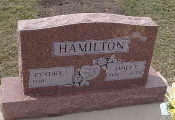 HAMILTON, JAMES E. - Will County, Illinois | JAMES E. HAMILTON - Illinois Gravestone Photos