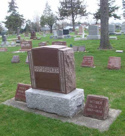 HARSHBARGER, CELIA E. - Will County, Illinois | CELIA E. HARSHBARGER - Illinois Gravestone Photos