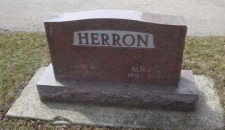HERRON, JOHN N. - Will County, Illinois | JOHN N. HERRON - Illinois Gravestone Photos