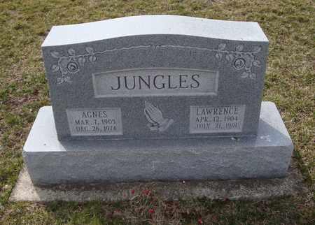 JUNGLES, AGNES - Will County, Illinois | AGNES JUNGLES - Illinois Gravestone Photos