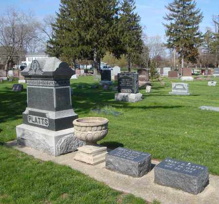 PLATTS, EMERY D. - Will County, Illinois | EMERY D. PLATTS - Illinois Gravestone Photos
