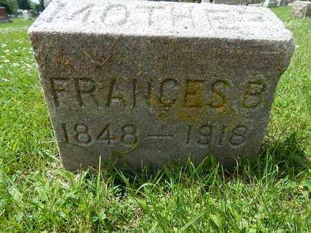 RILEY, FRANCES B - Will County, Illinois | FRANCES B RILEY - Illinois Gravestone Photos