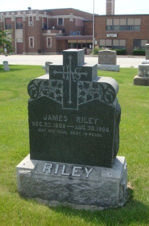 RILEY, JAMES - Will County, Illinois | JAMES RILEY - Illinois Gravestone Photos