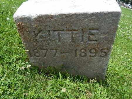 RILEY, KITTIE - Will County, Illinois | KITTIE RILEY - Illinois Gravestone Photos