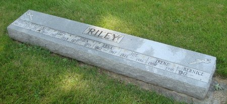 RILEY, ELIZABETH - Will County, Illinois | ELIZABETH RILEY - Illinois Gravestone Photos
