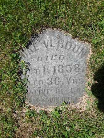 VERDON, LUKE - Will County, Illinois | LUKE VERDON - Illinois Gravestone Photos