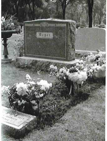 MEYER, ANNA KATHARINA THERESE - Winnebago County, Illinois | ANNA KATHARINA THERESE MEYER - Illinois Gravestone Photos