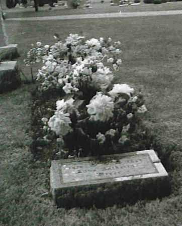 MEYER, ANNA KATHARINA THERESE - Winnebago County, Illinois   ANNA KATHARINA THERESE MEYER - Illinois Gravestone Photos