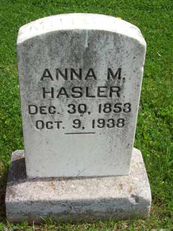 HASLER, ANNA M. - Woodford County, Illinois | ANNA M. HASLER - Illinois Gravestone Photos