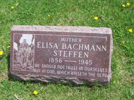STEFFEN, ELISA - Woodford County, Illinois | ELISA STEFFEN - Illinois Gravestone Photos