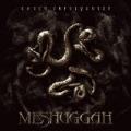 Catch ThirtyThree by Meshuggah