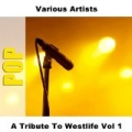 A Tribute To Westlife Vol 1 by Various Artists