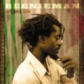 Art And Life [Explicit] by Beenie Man