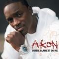 Sorry, Blame It On Me by Akon