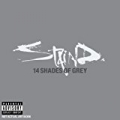 14 Shades Of Grey (US version) [Explicit] by Staind