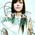 Wires...And The Concept Of Breathing [+digital booklet] by A Skylit Drive