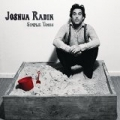 Simple Times by Joshua Radin