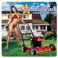 I Am (Album Version) by Zebrahead