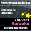 Ne Retiens Pas Tes Larmes (Rendu Célèbre Par Amel Bent) [Version Karaoké Avec Choeurs] - Single by Univers Karaoké
