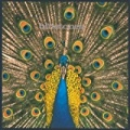Expecting To Fly (Expanded Edition) by The Bluetones