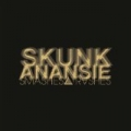 Smashes and Trashes - The Greatest Hits [Explicit] by Skunk Anansie