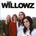 Talk In Circles by The Willowz