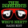 Who's Next? (Radio Edit) by True Ingredients