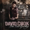 The Last Goodbye by David Cook