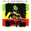 Big Mountain by Big Mountain