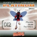 Platinum 12 Placebo, Muse & The Killers by Sunfly Karaoke