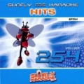 Sunfly Hits: Vol. 254 by Sunfly Karaoke