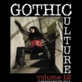 Gothic Culture Vol.12 - 27 Darkwave & Industrial Tracks by Various artists