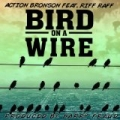 Bird On A Wire (Single) by Action Bronson Feat. Riff Raff