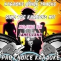 Karaoke Quick Tracks : Moving On (Karaoke Version) (Originally Performed By James Lann) by Pro Choice Karaoke