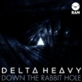 Down The Rabbit Hole by Delta Heavy