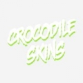 Crocodile Skins - Single by Spirit Animal